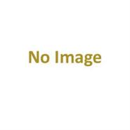 Asics Solution Speed FF 2 Men's Tennis Shoe (Amber/White)